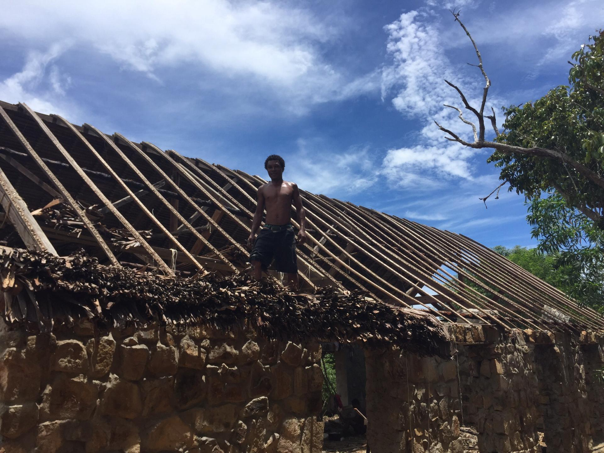 Pour la toiture ,feuilles d'arbres du voyageur